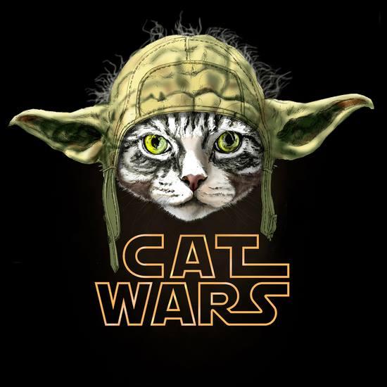 cat wars 1