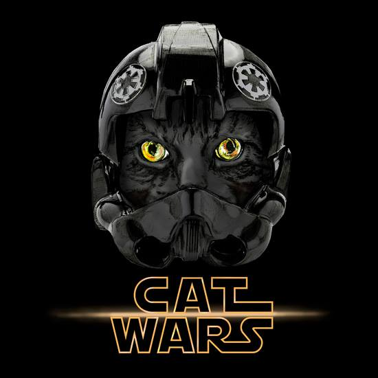 cat wars 9